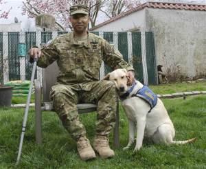 2D274905921740-today-army-service-dog-140522-02.blocks_desktop_medium