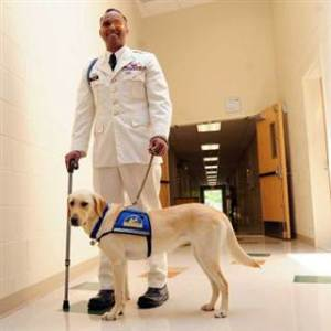 2D274905921771-today-army-service-dog-140522-01.blocks_desktop_small